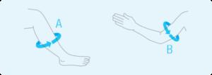 Sposób mierzenia obwodu łydki i przedramienia