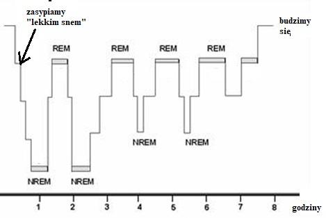 Na zdjęciu fazy REM podczas snu. Zdrowy sen jest ważny!