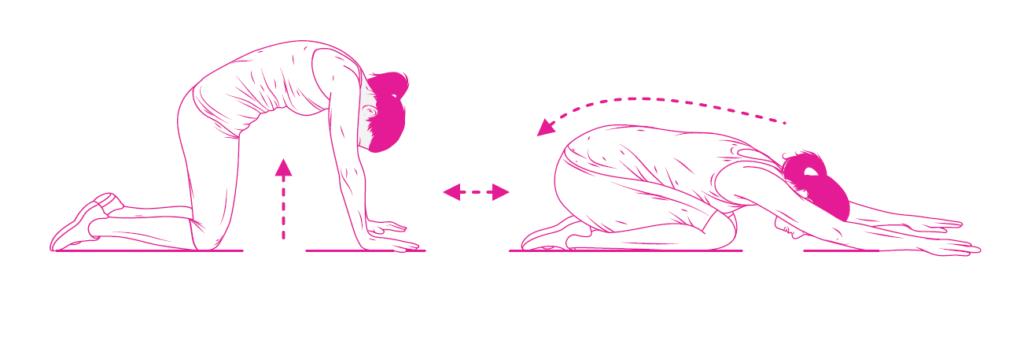 Zestaw ćwiczeń na ból kręgosłupa od Dr Sapporo