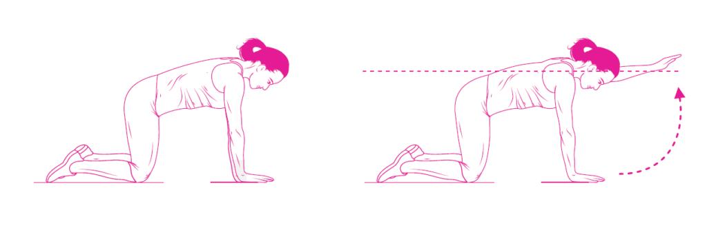 Wzmocnij mięśnie kręgosłupa z serią naszych ćwiczeń!